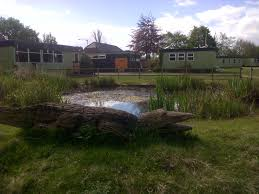 Sleepover: Austerfield Field Study Centre, Doncaster